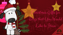 Christmas Gifts for Dogs that You Would Like to Have