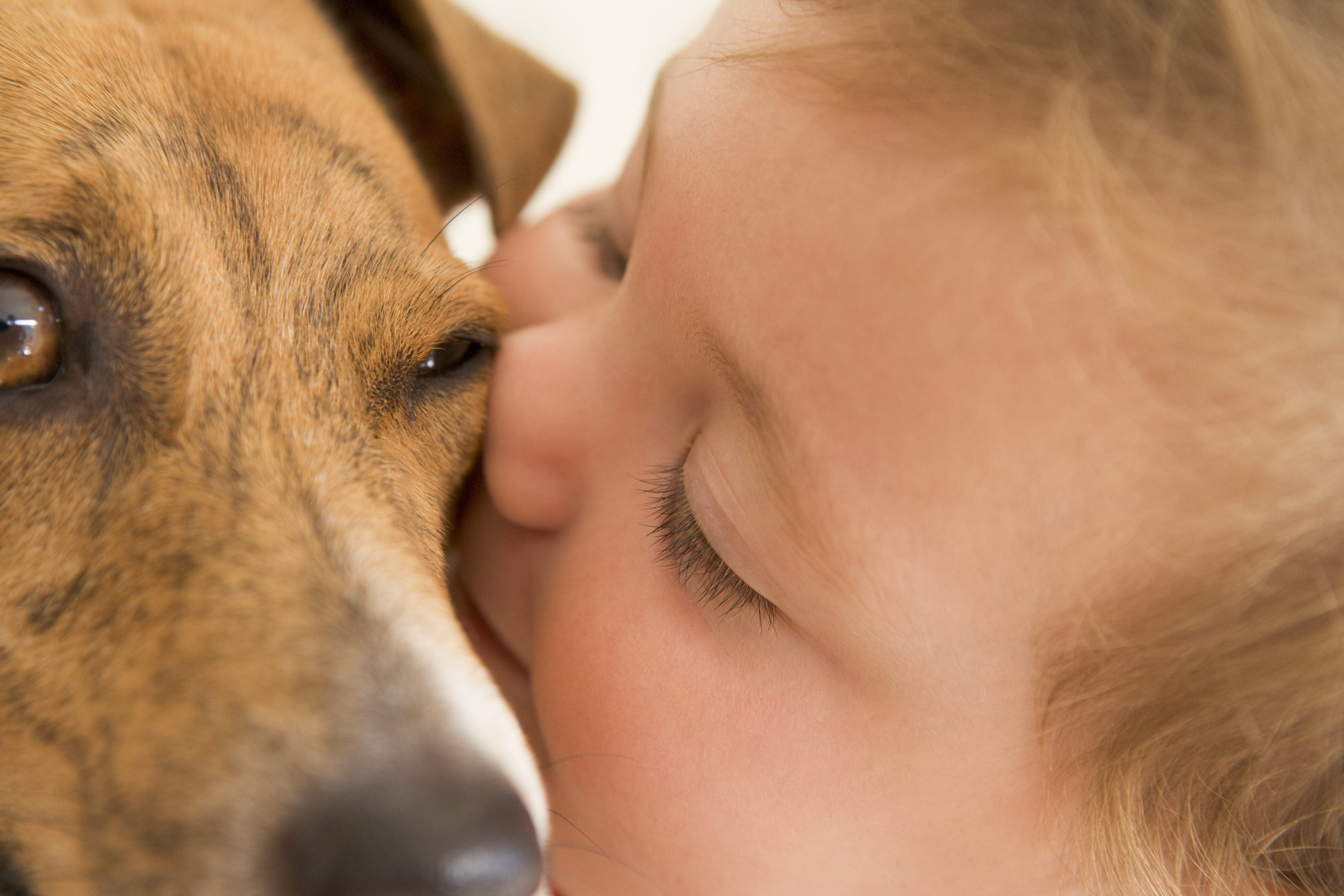 General Dog Care on a Routine Basis