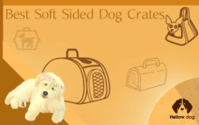 Best Soft Sided Dog Crates