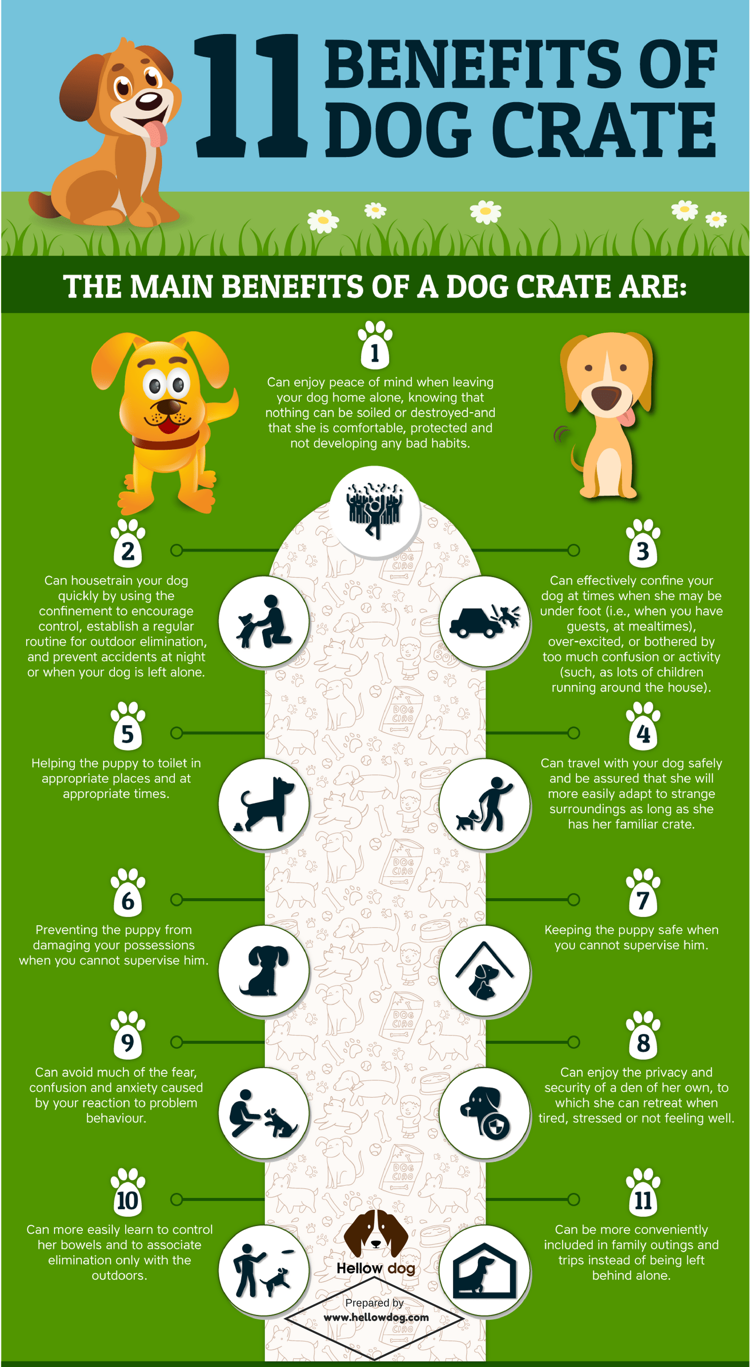 11 Benefits of Dog Crate