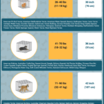 Dog Crate Size Chart, Most Perfect Crate Size for Your Dog