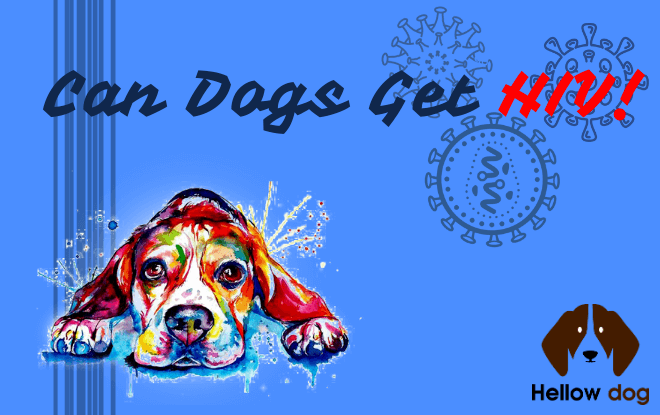 Can Dogs Get HIV!