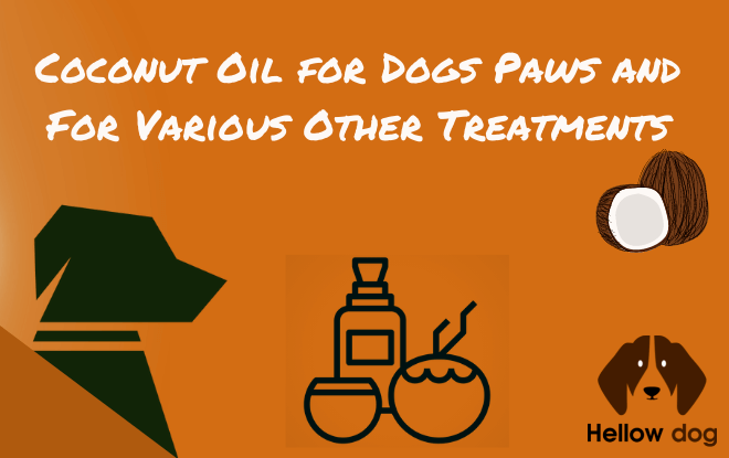 benefits of coconut oil dog's paws