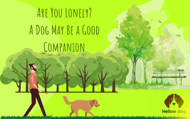 A Dog May Be a Good Companion