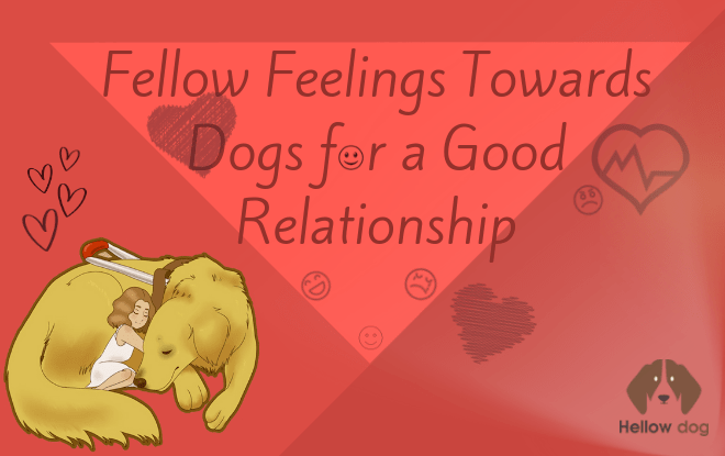 Fellow Feelings Towards Dogs for a Good Relationship