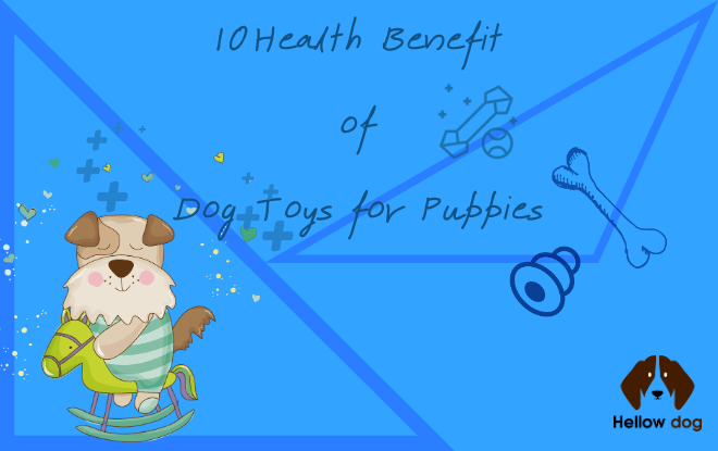 10 Health Benefits of Dog Toys for Puppies