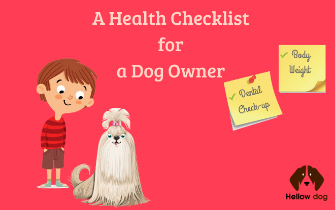 A Health Checklist for a Dog Owner