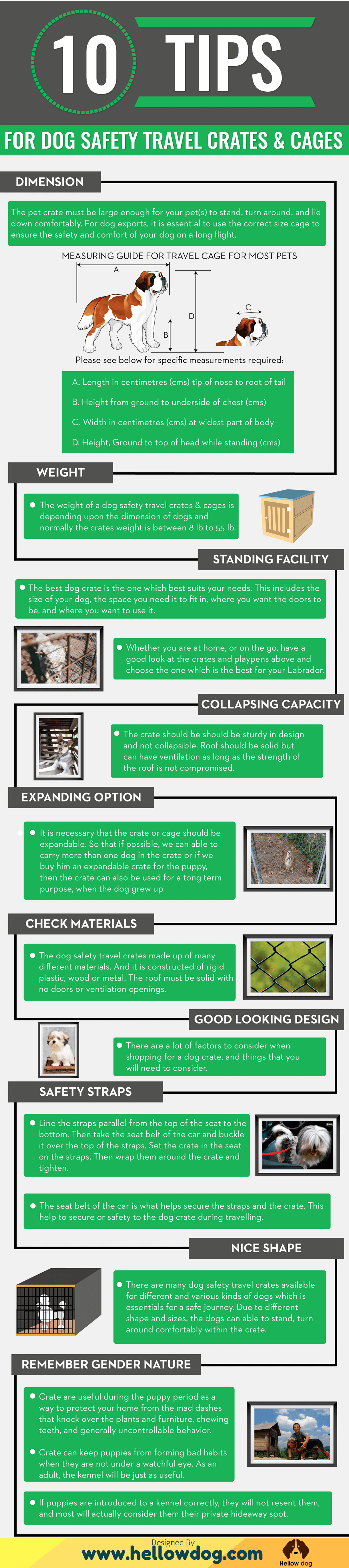 Dog Safety Travel Crates & Cages- Infographic