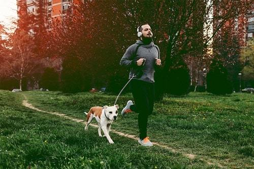 exercise with your dog in cold day