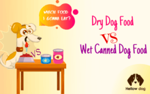 Dry Dog Food vs. Wet Canned Dog Food
