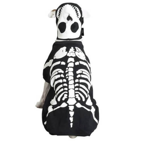 Casual Canine Glow Bones Dog Skeleton Costume