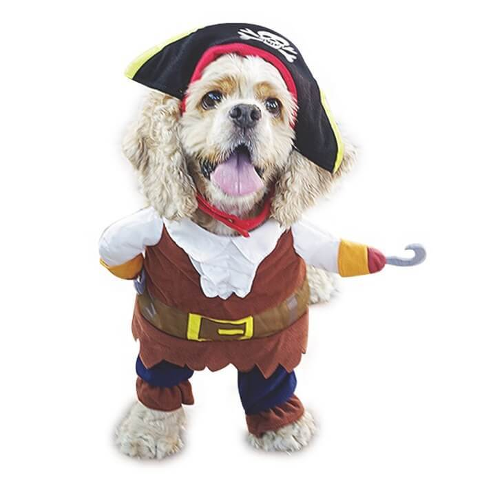 NACOCO Pirates of The Caribbean Style Dog Costume