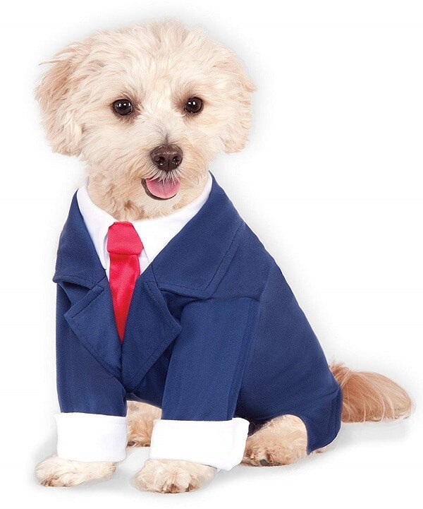 Rubies Dog Business Suit Costume