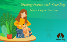 Shaking Hands with Your Dog Needs Proper Training