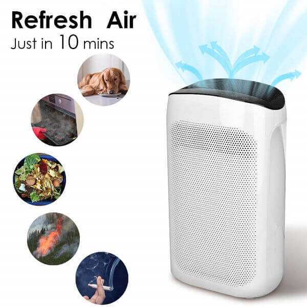 The Power of the Air Purifier