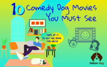 Comedy Dog Movies