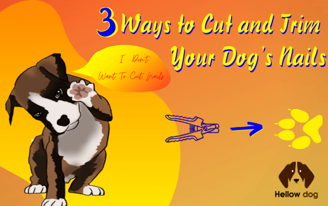 3 Ways to Cut and Trim Your Dog's Nails