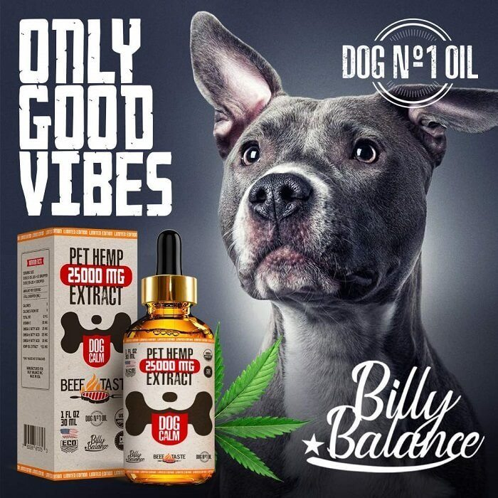 7 Top Hemp Oil Brands in 2020 and How to HempChoose the Best for My Dog