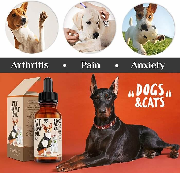 DOGS & CATS - Hemp Oil Dogs Cats Pets - Best for a deep sleep