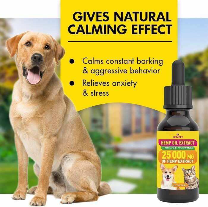 HEMPET Hemp Oil Extract for Dogs - Best for hyperactive pets