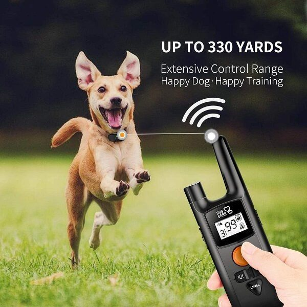 A dog shock collar often comes with a remote