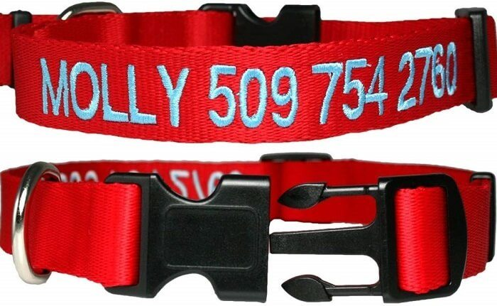 GoTags Personalized Dog Collar
