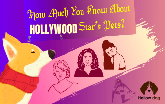 How Much You Know About Hollywood Star's Pets