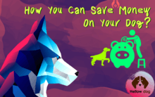How you can save money on your dog