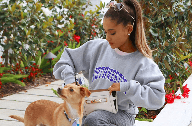 Ariana Grande and her famous dog Toulouse
