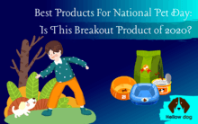 Best Products For National Pet Day Is This Breakout Product Of 2020