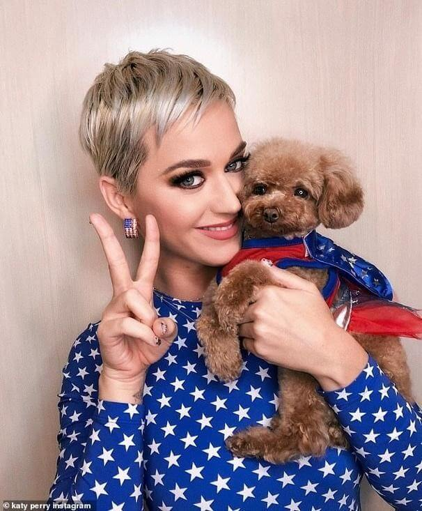 Katy Perry cuddling with the beloved Nugget