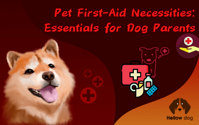 Pet First-Aid Necessities Essentials for Dog Parents