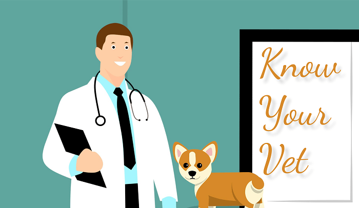 Know your vet