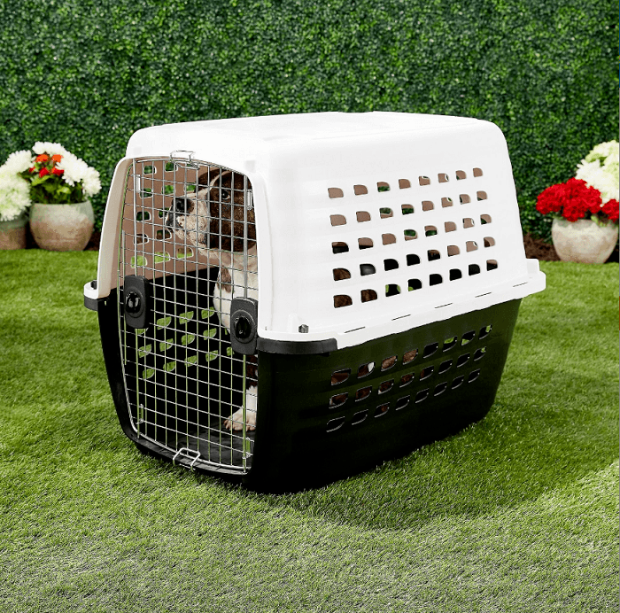 Petmate Compass Plastic Dog Kennel