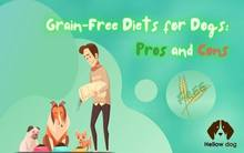 Grain-Free Diets for Dogs Pros and Cons