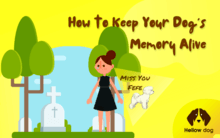 How to Keep Your Dog's Memory Alive