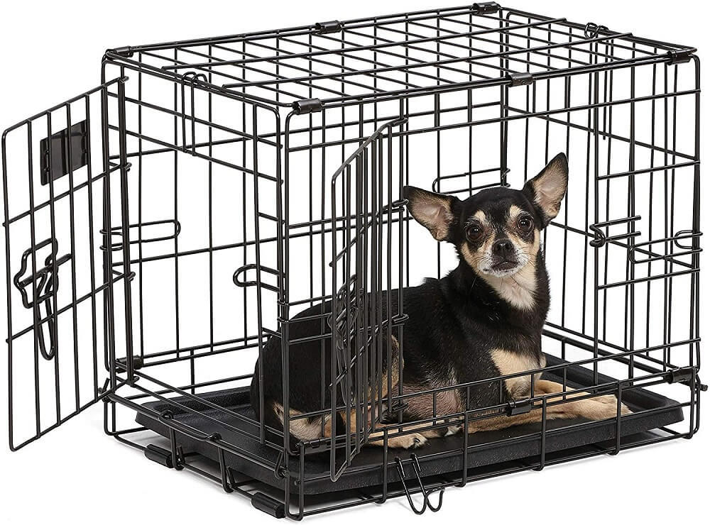 The dog setting inside the cage