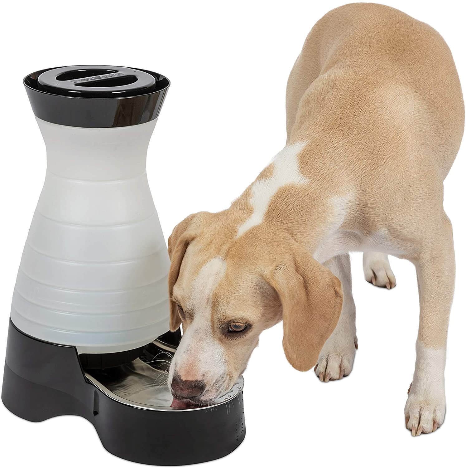 PetSafe Healthy Pet Gravity Food or water bowls Station