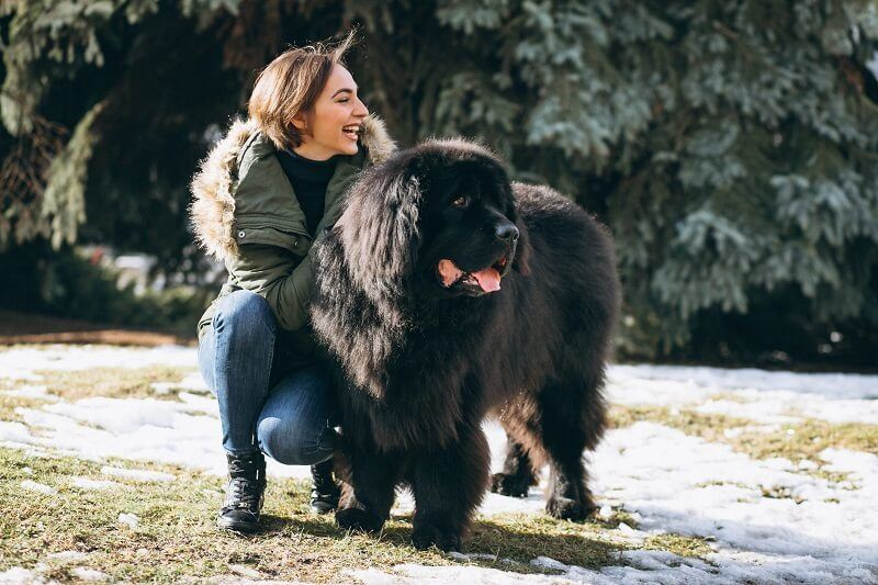 woman with her dog which is look actual bear