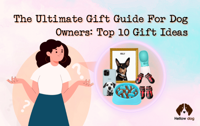 The Ultimate Gift Guide for Dog Owners